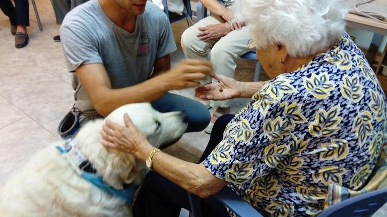 terapia caninan