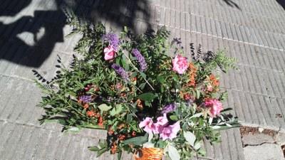 09_11,2020_ TÀRREGA_ofrena floral (7).jpg